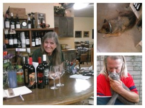Meet the Cata Vinos staff! (Well, some of them!) Yvonne, the lovely young lady in the photo at the left, Cuvee the handsome canine and the little monster on my husband's lap is Vino.