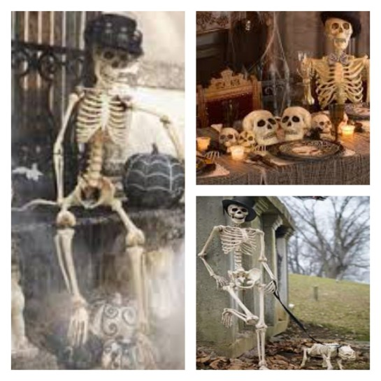 A few more bare bones decorating ideas! Stores like Party City, Target and even Cost Plus have an assortment of skeletal animals, so Mr. BONESjangle can have a fur(less)ever friend, too!